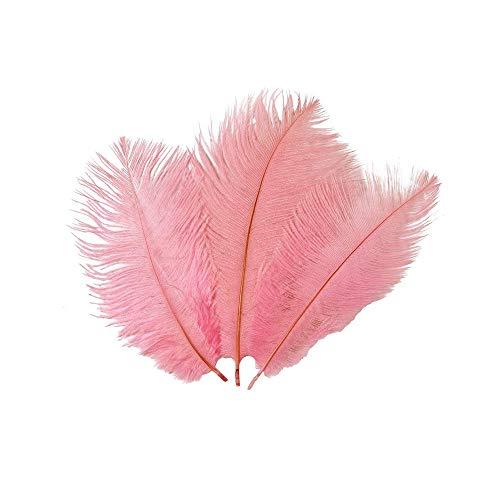(sunnymi 10PCS Feder Hochzeits Spaß spezielle Tabelle Blumendekoration kann Strauß Fertigkeit Federn groß färben für Party Dekor (Rosa, 10pcs))