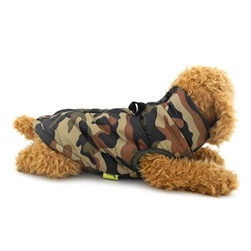 ranphy Kleiner Hund/Katze Softgeschirr Weste gepolsterte Jacke Reißverschluss Grün Camo -