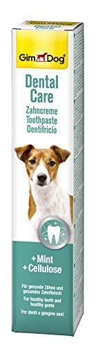 GimDog Dental Care Zahncreme für Hunde, Mint und Cellulose für gesunde Zähne und Zahnfleisch, Beugt Zahnbelägen und Zahnstein vor, 1 Tube (1 x 50 g)