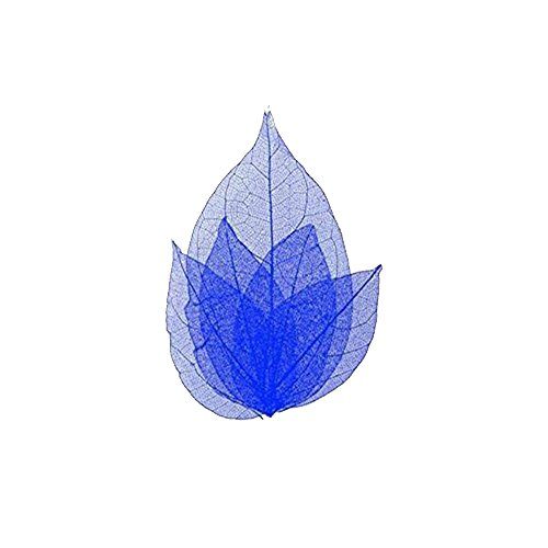 Nded Blattskelett für Nägel, Nail Art, Farbe: Blau