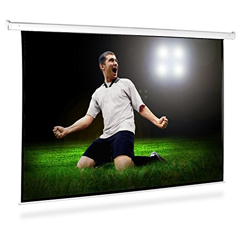 Roll-up Home Cinema Projector Screen HDTV (300x220cm, 4:3 Size Ratio, Gain Factor: 1.0) Online