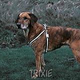 Trixie Flash Geschirr, M: 45–65 cm/20 mm, schwarz