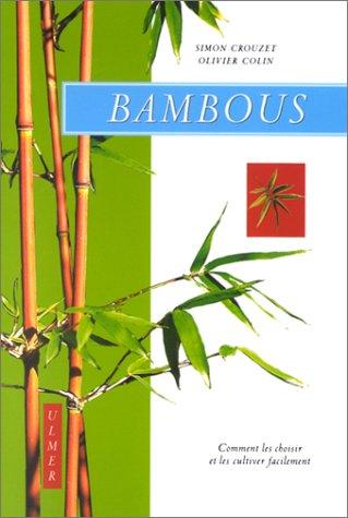 Bambous : Comment les cultiver facilement