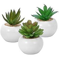 WINOMO 3pcs suculentas decorativas decorativas suculentas artificiales plantas falsas con macetas blancas