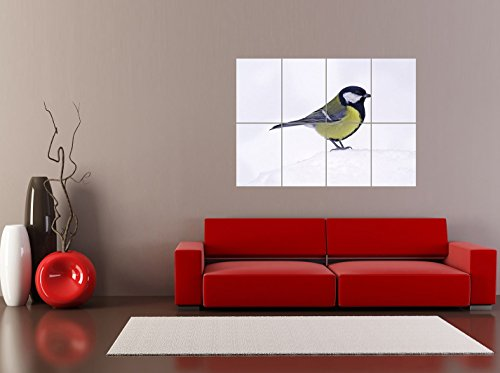 HOTOGRAPH GRAPHY ANIMAL NATURE BIRD BLUE TIT FINCH SNOW COOL CUTE REPRODUCTION POSTER OZ3561 (Giant Tit)