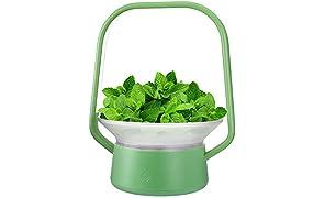 Sistema di coltivazione idroponica, supporto per la coltivazione di erbe, per interni, per coltivare le piante, per costruire il tuo giardino interno, V-Basket-G