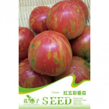 Souked 20PCS Mini tomates rouges colorés Seeds