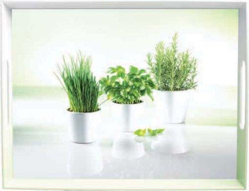 emsa-2030280-classic-plateau-motif-de-herbs-50-x-37-cm