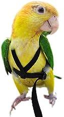 Pawzone Bird Harness for Bigger Birds (MPZHARBIRD)