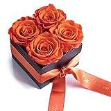 Blumenversand Rosenbox La Vie en Roses 4 konservierte Rosen haltbar 3 Jahre / 8,5x8,5cm / Blumenbox/Flowerbox / Blumengruß verschicken von ROSEMARIE SCHULZ® Heidelberg (Orange)