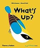 What's Up? (Flip Flap Pop-Up)