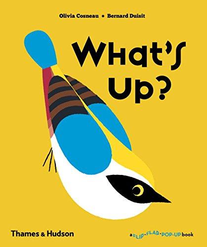 What's Up? (A Flip Flap Pop Up Book) par Olivia Cosneau
