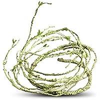Reptiles Decor, lommer 110cm/43,31en PU Artificial ratán Plantas Lluvia Bosque Paisajes Diseño vida Vides Sala Decor