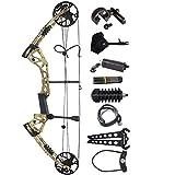 ZSHJG Complete Compound Bow Arrow Package Set 15-70lbs Aluminum Adjustable Adult Compound Bow