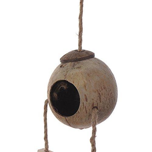 Kokosnussschale mit Leiter Vogel Spielzeug Haustier Papagei Ara African Greys Wellensittiche Vogelkäfig Spielzeug