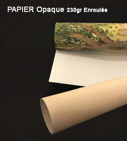 Feeling at home IMPRESION-sur-Papier-zebraline-Gurtler-Animaux-Affiche-roulée-Fine-Art- pour-cadre-Poster-pour-décoration-murale-dimensions-72_X_53_cm