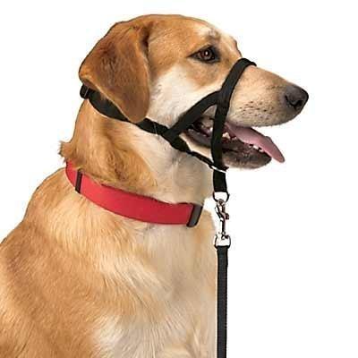 Halti Dog Headcollar Size 3 (Black) by Halti