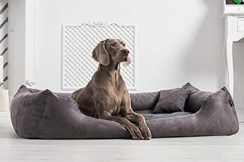 tierlando® Orthopädisches Hundebett Pluto Soft   Visco   Samtweiches Velours: A Größe: PLV5 130x100 cm   B Farbe: 02 Graphit