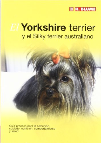 El Yorkshire terrier (Mascotas)