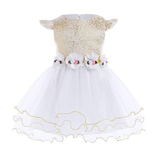 iiniim Baby Mädchen Kleid Festlich Kleid Mesh Prinzessin Kleid Blumenmädchenkleid Taufkleid...