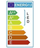 Ledbox LD1070114 LED-Leuchtmittel, röhrenförmig, T8, für Fleischtheken, 10 W, 60 cm, Lichtfarbe Rosa