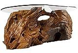 Windalf Rustikaler Wurzeltisch Layla b: 140 cm Wohnzimmertisch Unikat Handarbeit aus Wurzelholz