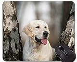 Mauspads, Gaming-Mauspad, Labrador-Hund - Genähte Kanten