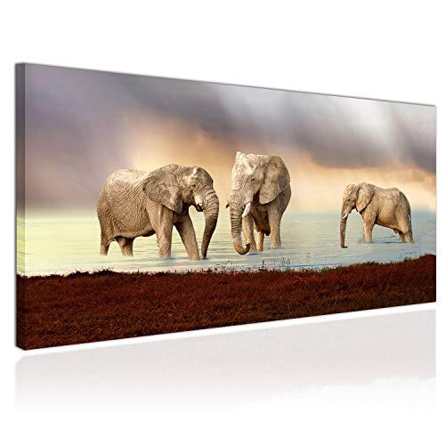 Topquadro Cuadro XXL Sobre Lienzo, Imagen Panorámica 100x50cm, Elefantes en el Lago,...