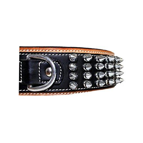 MICHUR STRIKE NO. 1, Hundehalsband, Halsband Nieten, HALSBAND LEDER MIT NIETEN, BEIGE/SCHWARZ, in verschiedenen Größen erhältlich - 4