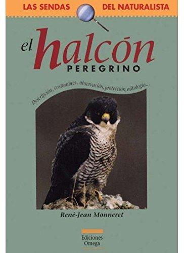 EL HALCON PEREGRINO (GUIAS DEL NATURALISTA-SENDAS DEL NATURALISTA)