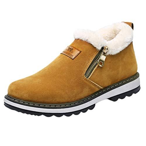S&H-NEEDRA Chaussures Hommes, Bottes pour Hommes Hiver Bottes Décontractées Chaudes Et Chaudes Bottes en Coton avec Fermeture à GlissièRe Winter Plus