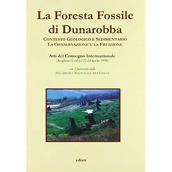La Foresta Fossile Di Dunarobba. Con Testo Geologico E Sedimentario. La Conservazione E La Fruizione