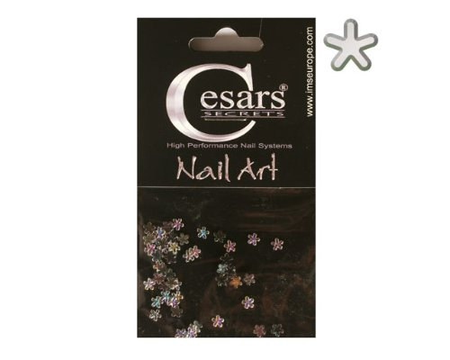 Cesars Nail Art Flowers arc en ciel