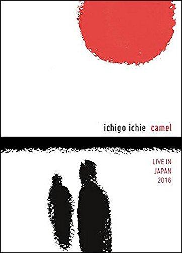 camel-ichigo-ichie-live-in-japan-2016-edizione-francia