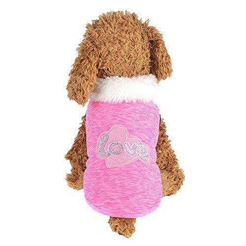 (GNYD Hund Haustier Kleidung Welpen Baumwollmantel Zwei Beinen Kleidung Haustier Winter warme Mantel)