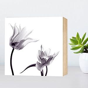 Transparente Schönheit II - schönes Holzbild 15x15x2cm echter Foto-Druck auf HOLZ - Wandbild Holzschild Holzdeko...