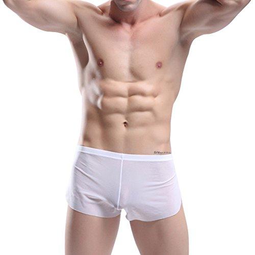 Herren Boxershorts Transparent Freizeit Shorts Trunks Badeshorts Schwimmhose