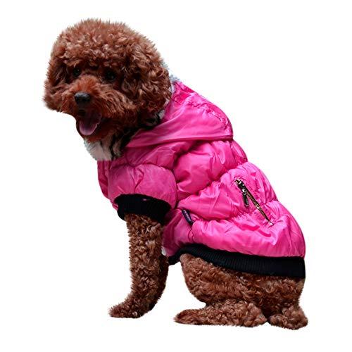 Amphia - Haustier Hund Pelzkragen Mantel Baumwolle Jacke Kleidung,Haustier Hund Katze HündchenWinter Warm Kleidung Kostüm Jacke Mantel Bekleidung(Heißes (Heiße Katze Kostüm)