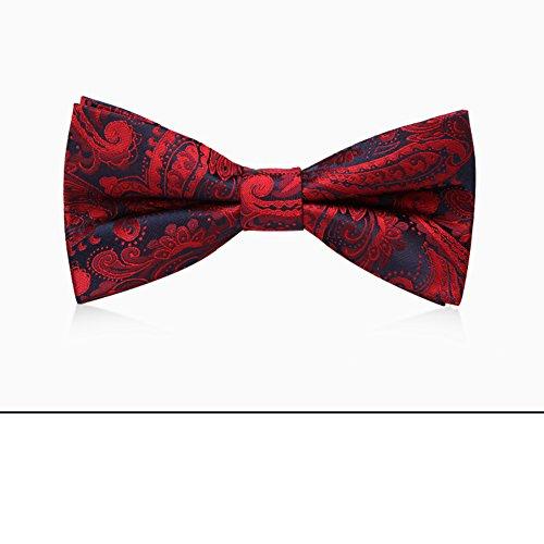 Cravates Noeud papillon à motifs/arc de mode