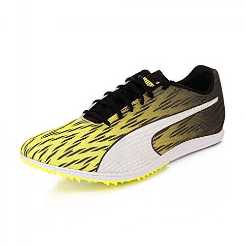 Puma Evospeed Distance 7, Chaussures d'Athlétisme Homme