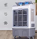 FFENGG Raffrescatore Rinfrescatore Ventilatore Umidificatore d'Aria con Serbatoio Ghiaccio Acqua, 45 lt