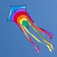 CIM Einleiner-Drachen - Rainbow Eddy - für Kinder ab 3 Jahren - Abmessung: 65x74cm - inkl. 80m Drachenschnur und 8x105cm Streifenschwänze