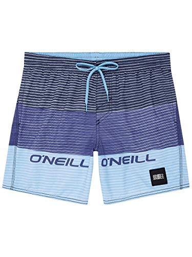 O'Neill PM Radious Pantalones Cortos