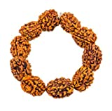 #10: Ankita Gemstones Genuine Original Natural Nepali 3 Face Rudraksh Bracelet, 3 Mukhi Rudraksha Bracelet