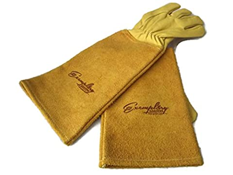 Rose Pruning Gloves for Men and Women. Thorn Proof Goatskin Leather Gardening Gloves with Long Cowhide Gauntlet to Protect Your Arms Until the Elbow (Medium,