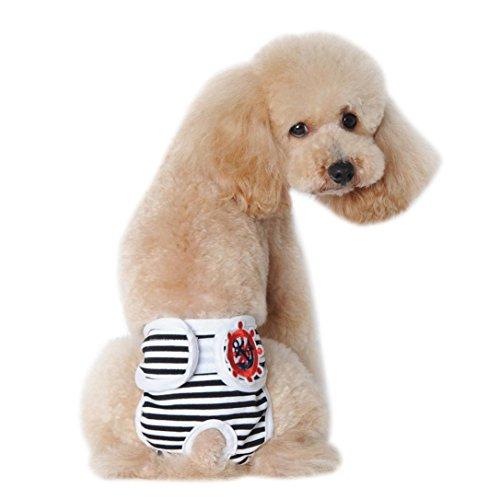 Nette weibliche Haustier Hosen, Hmeng Katze Hund Mädchen Panty in der Saison Sanitär Knickers Welpen Scanties Shorts (L, Schwarz) (Kostüme Knickers)