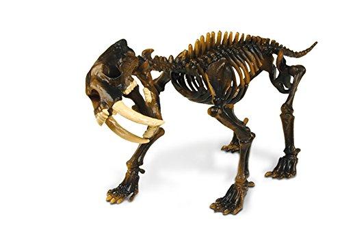 Unbekannt Geoworld 23214108 - Säbelzahntiger Skelett, im Eisberg, 23 cm Preisvergleich