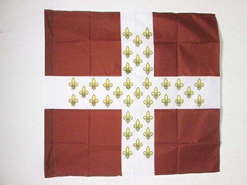AZ FLAG Flagge KÖNIGREICH Frankreich Regiment D\'Armagnac 1776-1791 90x90cm - FRANZÖSISCHE Infanterie Fahne 90 x 90 cm Scheide für Mast - flaggen Top Qualität