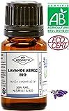 Aceite Esencial de Lavanda Aspic BIO - MyCosmetik - 10 ml