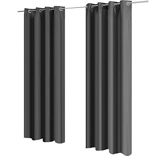 Gräfenstayn® Latika Verdunklungsgardinen Thermogardinen mit Ösen und Polar-Fleece - 140 x 245 cm - viele attraktive Farben (Grau)